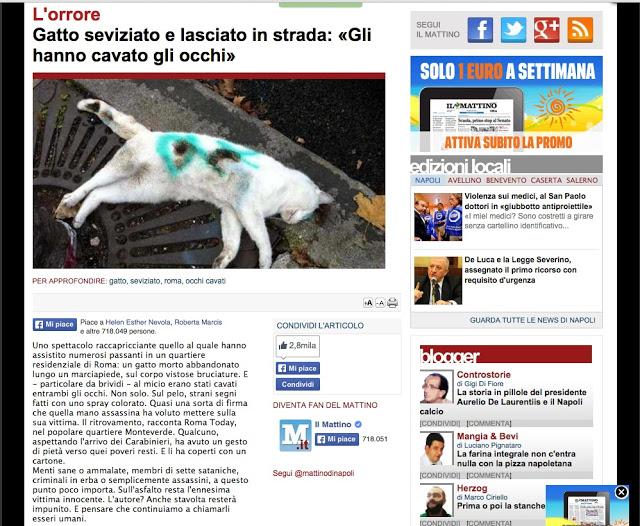 http://www.ilmattino.it/pelo_e_contropelo/gatto_seviziato_occhi_cavati_gettato_in_strada/notizie/446222.shtml